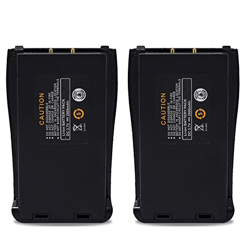Replacement Battery Pack - 9