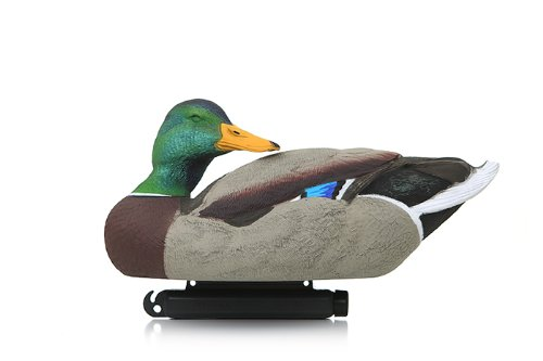 Flocked Drake Head Mallards (12 Pack)  12120 (Flocked Duck)