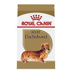 Royal Canin Breed Health Nutrition Dachshund Adult Dry Dog Food, 10-Pound 99