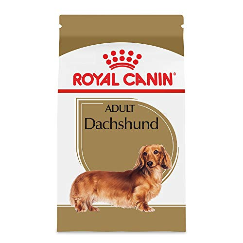 (Royal Canin Breed Health Nutrition Dachshund Adult Dry Dog Food, 10-Pound)