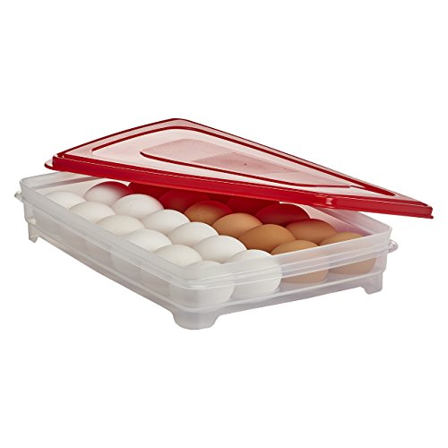 Buddeez, Inc 17604R-7427-BAG Buddeez Jumbo Egg Keeper Tray for 24 Eggs (Chicken Egg Bag)