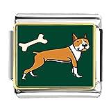 GiftJewelryShop Gold Plated Boxer Dog And Bone Bracelet Link Photo Italian Charm