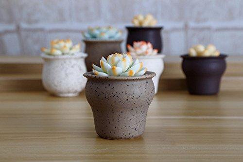 Little Rough Country Retro Simple Ceramic Succulent Planters Decorative Mini Rustic Herb Cactus Flower Plant Pot Home Desktop Decor (pack of 3) (Water Vat)