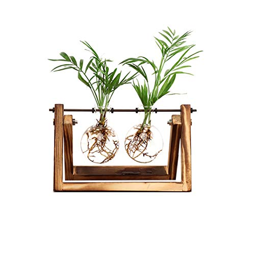 Ivolador Desktop Glass Planter Bulb Vase with Retro Solid Wooden Stand and Metal Swivel Holder for Hydroponics Plants Home Garden Wedding Decor (2 Bulb Vase)