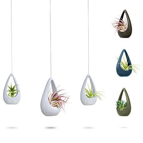 23 Bees | Hanging Air Plant Holder | White Hanger Ceramic Planter | Small Floating Succulent Pots Container | Cactus Holders with Metal Wire | 3 Pack