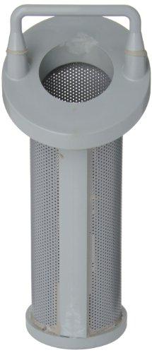Hayward CPVC Strainer Replacement Basket, Simplex/Duplex, 1'' by Hayward Flow Control