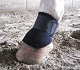 Equipro Horse Scalping Boots