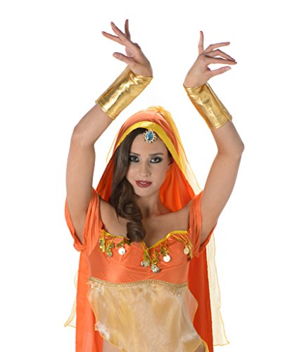 Women's Arabian Princess Costume - Halloween Costume (Cheap Couples Costumes For Halloween)