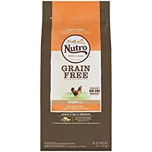 NUTRO Grain Free Puppy Farm-Raised Chicken, Lentils and Sweet Potato Dry Dog Food 4 Pounds