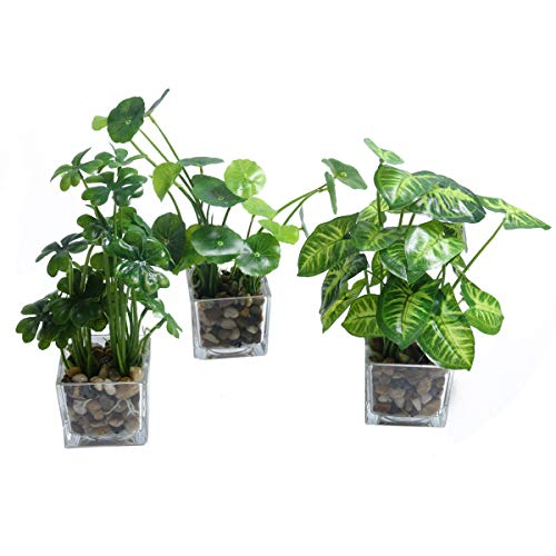 Pauwer Artificial Silk Plants in Glass Vase Fake Greenery Potted Plants Set of 3 for Home Bathroom Office Desk Decor