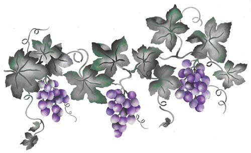 wall borders grapes - 9