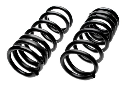 Raybestos 591-1024 Professional Grade Coil Spring Set
