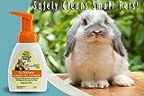 Citrus Magic Pet Foaming Pet Cleanser, 8-Fluid Ounce