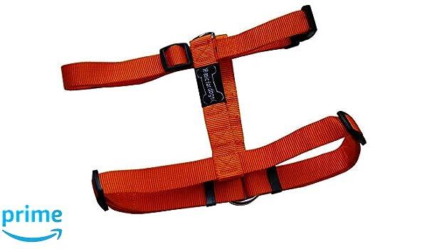 WOUAPY Arnés para Perro Basic Line, arnés de Naranja de 74/117 cm ...