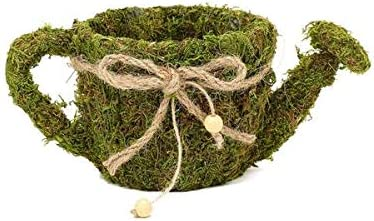 Efavormart Set of 2 5 /& 4.5 Preserved Moss Teacup Planter Box with Natural Braided Twine Bow