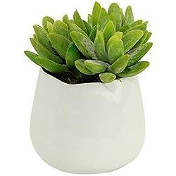 Small Faux Succulent Plant in White Ceramic Vase - Artificial Succulent Trio Decor Potted