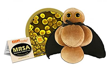 Giant Microbes Plush MRSA Multiple-Resistant Staphylococcus Aureus Microbe, 5 to 7 by Giant