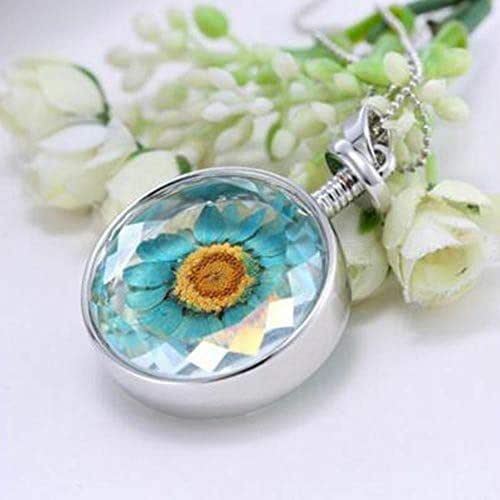 Blue Real Round Transparent Long Necklace Dried Flower Sweater Chain Pendant