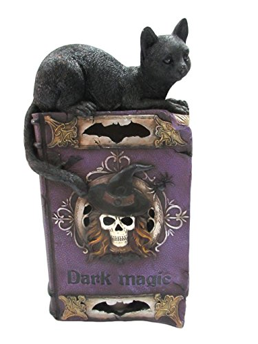 Pacific Giftware Witchcraft Cat On Book of Dark Magic Spells with Color Changing LED Lights Halloween Decor Collectible Figurine ()