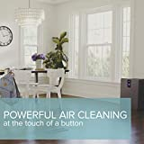Bissell air400 Air Purifier with HEPA Filter and CirQulate System, Grey, 24791