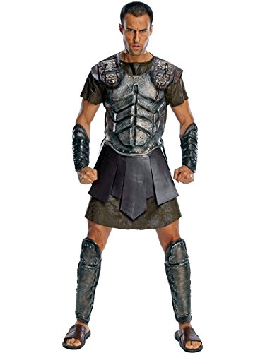 Clash of The Titans Deluxe Perseus Costume, Gray,