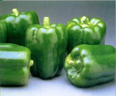 GREEN BELL PEPPERS FRESH FRUIT PRODUCE VEGETABLES BY THE POUND