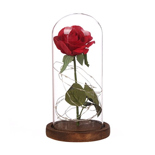 Red Silk Rose with Fallen Petals in Glass Cover, Home Holiday Party Wedding Valentines Day Creative Gift, Best Gift for Her (Black Base)