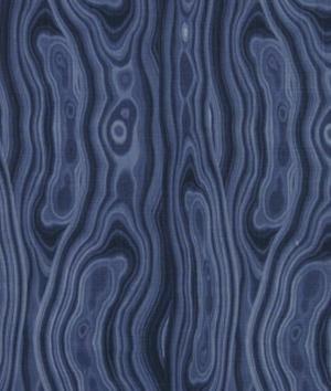 Robert Allen Malakos Printed Cotton Drapery Fabric in ()