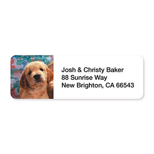 Darling Puppy Face Set of 215 Sheeted Address Labels