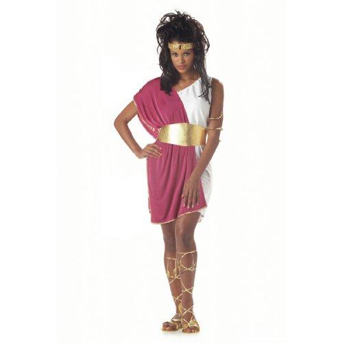 Female Togas Costumes (California Costumes Women's Toga Woman,White/Fuchsia,One Size Costume)