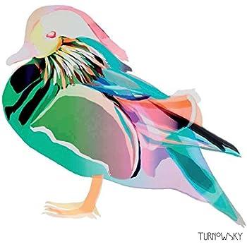 5  x   Paper Party Napkins  for Decoupage Duck Ducks Napkin Art