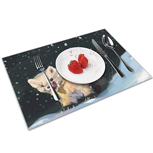 Candy Ran Cute Animal Ferrets Indoor/Outdoor Placemats/Place Mats/Table Mats Set of 4, Kitchen Tablemats for Dining Table, Non-Slip Washable Heat Resistant]()