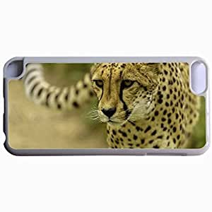 Customized Back Cover Case For iPod Touch 5 Hardshell Case, WHITE Back Cover Design Cheetah Personalized Unique Case For iPod Touch 5