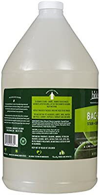 Biokleen Bac-Out Stain+Odor Remover, Destroys Stains & Odors Safely, for Pet Stains, Laundry, Diapers, Wine, Carpets, & More, Eco-Friendly, Non-Toxic, Plant-Based, 128 Ounces