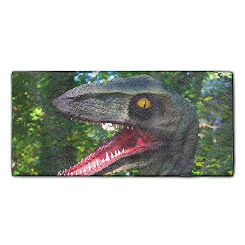 Machine Washable, Solid Forest Dinosaur Dishtowel 11.8 ¡Á 27.5 Inches