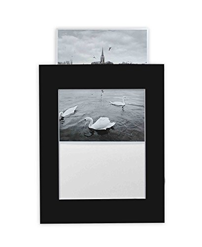 Golden State Art Pack of 10 Black 11x14 Slip-in Pre-adhesive Photo Mat for 8x10 picture with backing board pre-assembled, Includes 10 clear bags