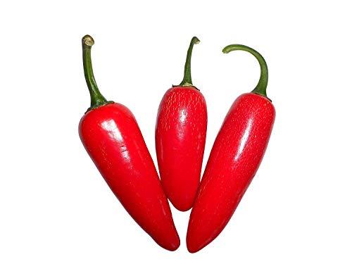 Medium Jalapeno - Medium Jalapeno Red -> 10 Seeds by Samenchilishop