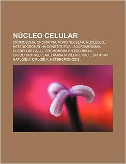Núcleo celular: Cromosoma, Cromatina, Poro nuclear