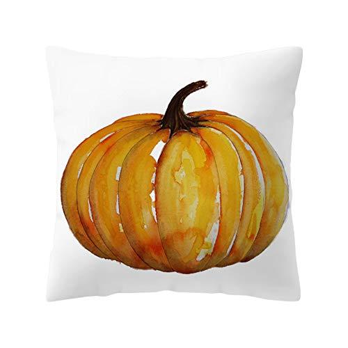 WFeieig_Halloween Soft Cozy Velvet Throw Pillow Solid Square Cushion Cover Black]()