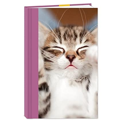 Gatos protección Stationery - Cuaderno de tapa dura (A5) de ...