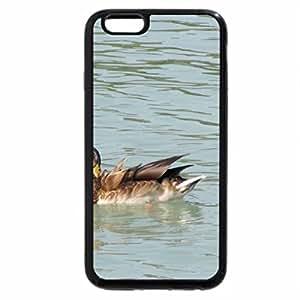 iPhone 6S / iPhone 6 Case (Black) Hungarian duck