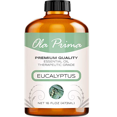 - 16oz - Premium Quality Eucalyptus Essential Oil (16 Ounce Bottle) Therapeutic Grade Eucalyptus Oil