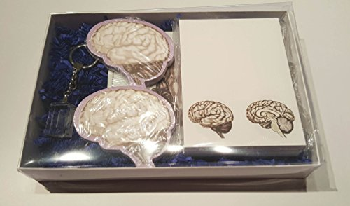 Brain Gift Box Collection, 6 Pack for Anatomy, Neurological Students and Professional by Blue Tree Publishing Inc.,