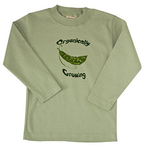Long Sleeve Organic Cotton Baby Shirt TEE (24m, - Sleeve Ecobaby Long Organics