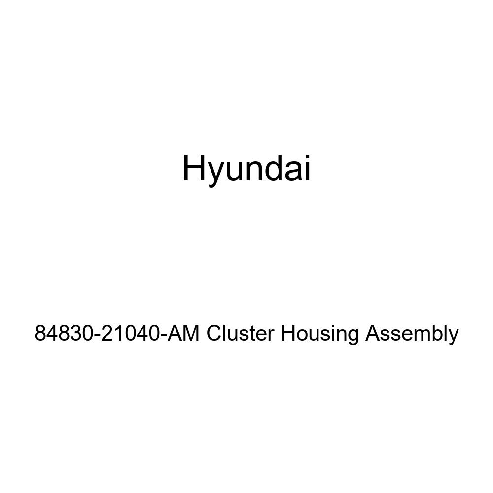 Genuine Hyundai 84830-21040-AM Cluster Housing Assembly