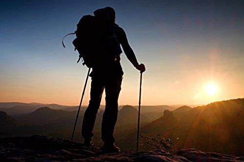 Red-Guru Trekking Poles - Collapsible and Adjustable, Black