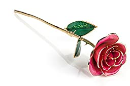 ZJchao Long Stem 24k Gold Dipped Rose Flower, Best Gift for Valentine\'s Day, Anniversary and Birthday (Pink)