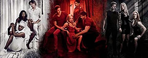 POP Home Store Wall True Blood 6 Series Home Decor Poster s Large Modern Home Decor Movie Comic Music Poster s 24X36 (True Blood Gifts)