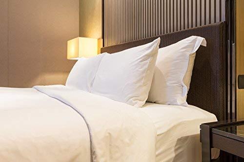 Le'vista Hotel Collection Set of 2 Pillows