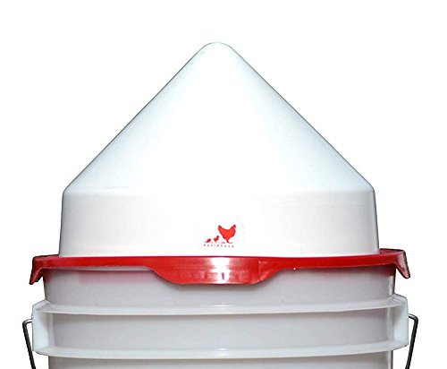 RentACoop No-Roost Cap for 5 Gallon Chicken Waterers (Best Roost For Chickens)